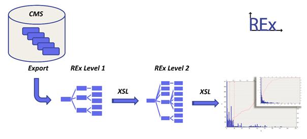 REx Vorgehensweise von der Datenerhebung bis zur Auswertung
